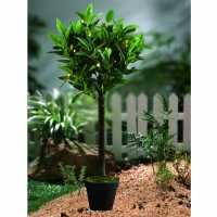 Garden Essentials Pre Lit Bay Leaf Tree  Домашни стоки